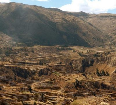Singlereise Peru - Colca Canyon