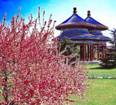 Große Singlereise China - Verbotene Stadt