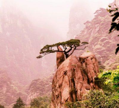 Große Singlereise China - Zhangjiajie - Berge