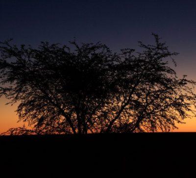 Singlereise Namibia -Sonnenuntergang
