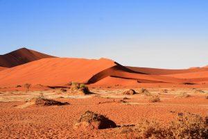 Singlereise Namibia - rote Dünen am Rand der Wüste